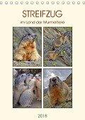 STREIFZUG im Land der Murmeltiere (Tischkalender 2018 DIN A5 hoch) - Susan Michel