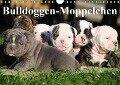 Bulldoggen-Moppelchen (Wandkalender 2019 DIN A4 quer) - Elisabeth Stanzer