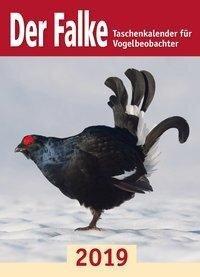 Der Falke-Taschenkalender für Vogelbeobachter 2019 -