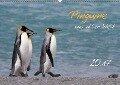 Pinguine aus aller Welt (Wandkalender 2017 DIN A2 quer) - Brigitte Schlögl