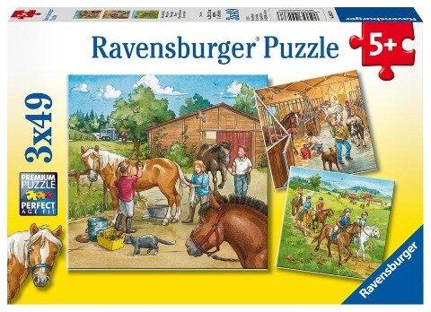 Mein Reiterhof. Puzzle (3 x 49 Teile)