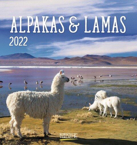 Alpakas und Lamas 2022 -