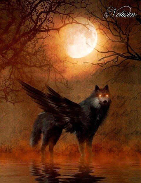 Fantasy Notizbuch: Schattenwolf - weiße Seiten mit Eckmotiv - Samuriel Sternenfeuer