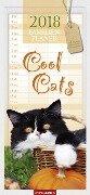 Familienplaner Cool Cats - Kalender 2018 -