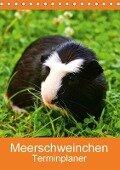 Meerschweinchen Terminplaner (Tischkalender 2018 DIN A5 hoch) Dieser erfolgreiche Kalender wurde dieses Jahr mit gleichen Bildern und aktualisiertem Kalendarium wiederveröffentlicht. - K. A. Kattobello