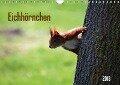 Eichhörnchen (Wandkalender 2018 DIN A4 quer) - k. A. SchnelleWelten