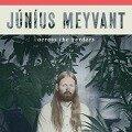 Across The Borders - Junius Meyvant