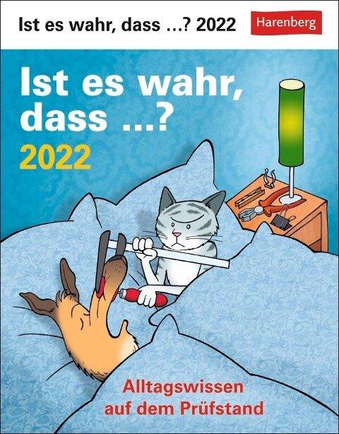 Ist es wahr, dass...? 2022 - Martina Stein, Tom Breitenfeldt