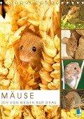 Zauberhafte Mäuse: Von wegen nur Grau (Tischkalender 2019 DIN A5 hoch) - K. A. Calvendo