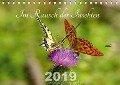 Im Rausch der Insekten (Tischkalender 2019 DIN A5 quer) - Leona Haase