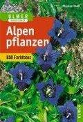 Alpenpflanzen - Thomas Muer, Oskar Angerer