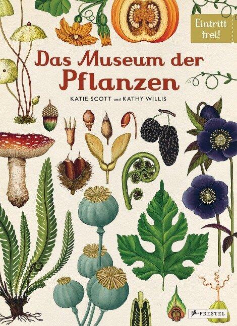 Das Museum der Pflanzen - Katie Scott, Kathy Willis