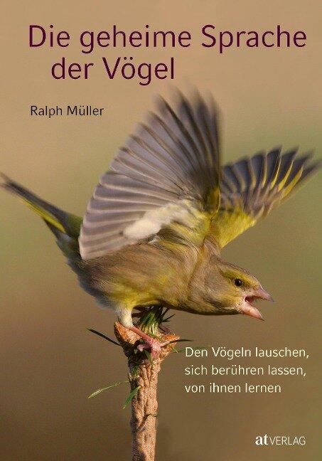 Die geheime Sprache der Vögel - Ralph Müller