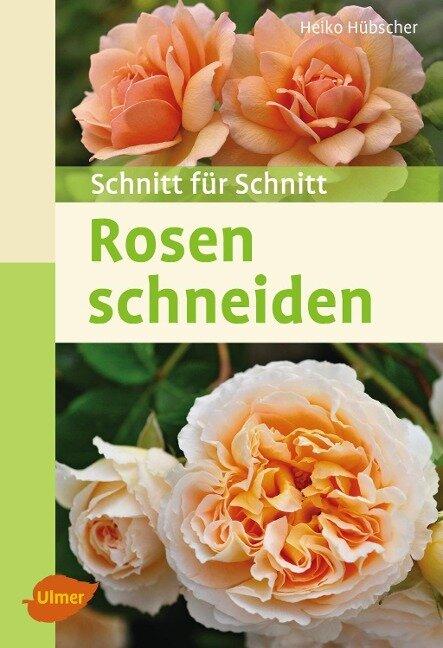 Rosen schneiden - Heiko Hübscher