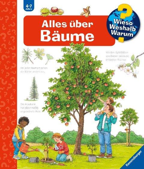 Alles über Bäume - Susanne Gernhäuser