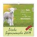 Irische Segenswünsche 2019. Der Postkarten-Kalender -