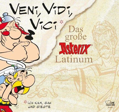 Asterix. Veni, Vidi, Vici - Rene Goscinny