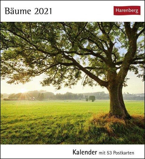 Bäume 2020 -