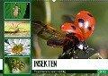 Insekten. Faszinierend und wichtig (Wandkalender 2019 DIN A2 quer) - Elisabeth Stanzer