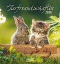 Tierfreundschaften 2018. Postkartenkalender -