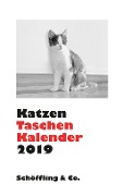 Katzen Taschenkalender 2019 -