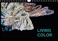 Living Color (Wandkalender 2018 DIN A4 quer) - Jörg Wand