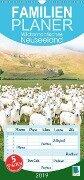 Wildromantisches Neuseeland (Wandkalender 2019 PRO_49_format hoch) - K. A. Calvendo