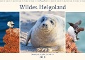 Wildes Helgoland - Basstölpel, Kegelrobbe und Co. 2018 (Wandkalender 2018 DIN A3 quer) Dieser erfolgreiche Kalender wurde dieses Jahr mit gleichen Bildern und aktualisiertem Kalendarium wiederveröffentlicht. - Daniela Beyer (Moqui)