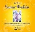 Seelen-Medizin - Lisa Biritz