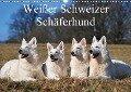 Weißer Schweizer Schäferhund (Wandkalender 2017 DIN A3 quer) - Sigrid Starick