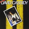 Gettin' In The Street - David Cassidy