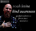 Kind Awareness: Guided Meditations for an Inner Revolution - Noah Levine