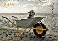 Bolonka 2018 (Wandkalender 2018 DIN A3 quer) Dieser erfolgreiche Kalender wurde dieses Jahr mit gleichen Bildern und aktualisiertem Kalendarium wiederveröffentlicht. - C. Winnen