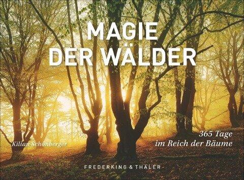 Tischaufsteller Magie der Wälder -