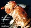 Das Basteln der Evolution - Walter Gehring, Klaus Sander