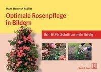 Optimale Rosenpflege in Bildern - Hans Heinrich Möller