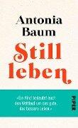 Stillleben - Antonia Baum