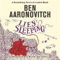 The Seventh Rivers of London novel - Ben Aaronovitch