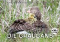 Emotionale Momente: Die Graugans. (Wandkalender 2018 DIN A3 quer) - Ingo Gerlach
