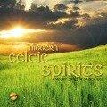 Modern Celtic Spirits - Various