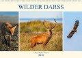 Wilder Darß - Fuchs, Hirsch und Co. 2018 (Wandkalender 2018 DIN A2 quer) Dieser erfolgreiche Kalender wurde dieses Jahr mit gleichen Bildern und aktualisiertem Kalendarium wiederveröffentlicht. - Daniela Beyer (Moqui)