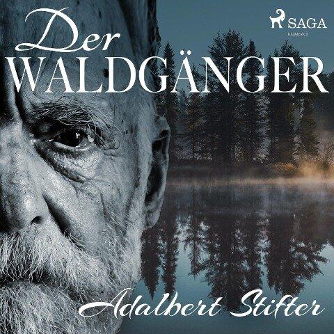 Der Waldgänger - Adalbert Stifter