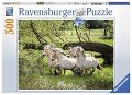 Norwegische Fjordpferde. Puzzle 500 Teile -