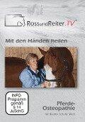 Mit den Händen heilen - Pferde-Osteopathie mit Beatrix Schulte Wien - Beatrix Schulte Wien