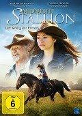 Midnight Stallion - Der König der Pferde -