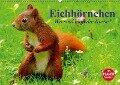 Eichhörnchen. Wo sind bloß die Nüsse? (Wandkalender 2017 DIN A2 quer) - Elisabeth Stanzer