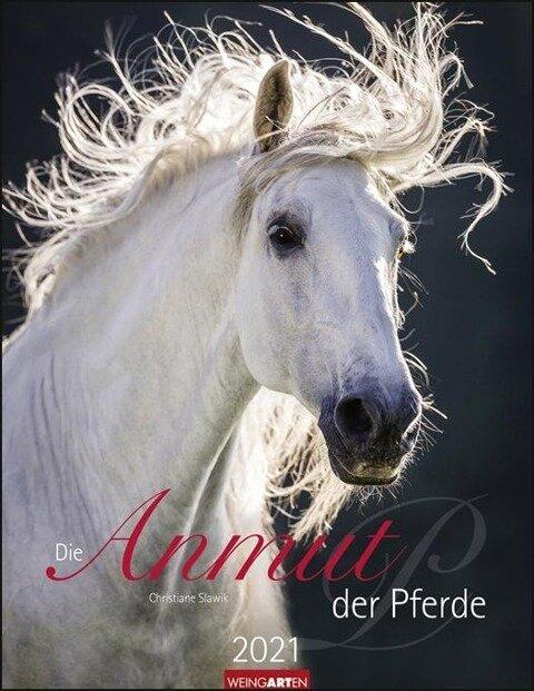 Die Anmut der Pferde - Kalender 2020