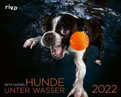 Hunde unter Wasser 2022 - Seth Casteel