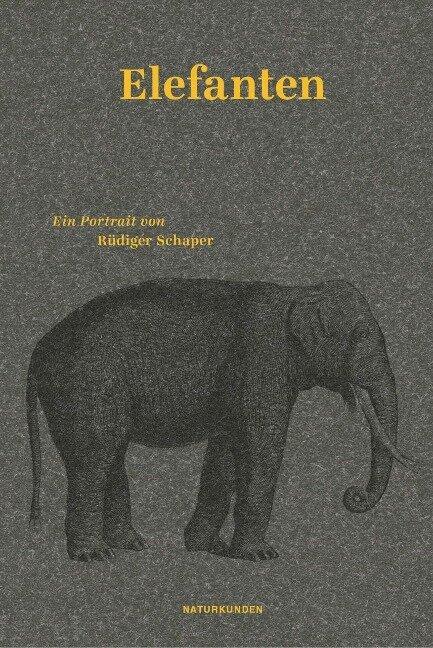 Elefanten - Rüdiger Schaper
