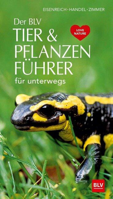 Der BLV Tier & Pflanzenführer - Wilhelm Eisenreich, Alfred Handel, Ute E. Zimmer
